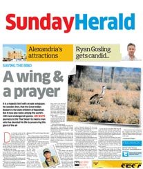 Sunday Herald Ad Rates