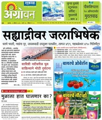 Sakal Agrowon Ad Rate Card Mumbai
